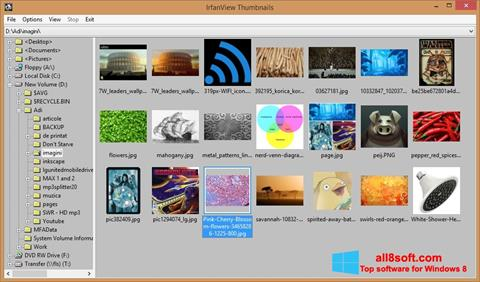 Screenshot IrfanView per Windows 8