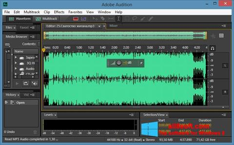 Screenshot Adobe Audition CC per Windows 8