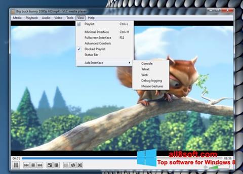 Screenshot VLC Media Player per Windows 8